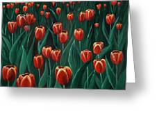 Tulip Festival Greeting Card