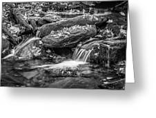 Waterfall Great Smoky Mountains Painted Bw    Greeting Card