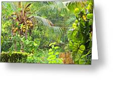 Westmoreland Jamaica 3 Greeting Card