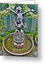 001 Fountain Buffalo Botanical Gardens Series Greeting Card