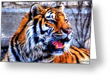 002 Siberian Tiger Greeting Card
