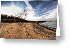 008 Presque Isle State Park Series Greeting Card
