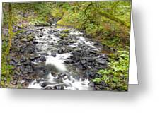 0106 Columbia River Gorge Near Bridal Veil Falls Greeting Card