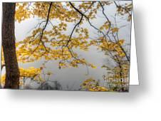0135 Autumn Gold  Greeting Card