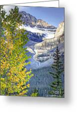 0141 Fall Colors On Icefield Parkway Greeting Card