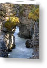 0191 Athabasca Canyon 2 Greeting Card