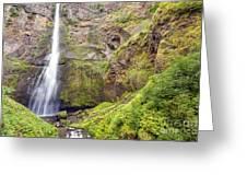 0237 Multnomah Falls Oregon Greeting Card