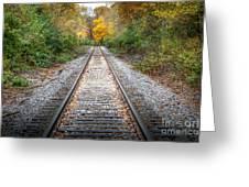 0276 Tracks Greeting Card