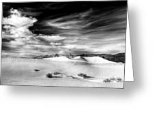 0293 Death Valley Sand Dunes Greeting Card