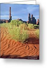 0348 Totem Pole Greeting Card