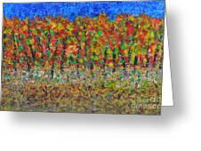 035 Fall Colors Greeting Card
