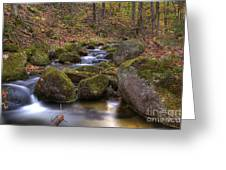 0531 Baxter State Park Greeting Card