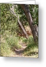 08.03.14 Palo Duro Canyon Rojo Grande Trail 8e Greeting Card