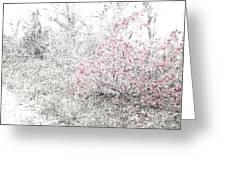 1-108 Manifestations Of Eternity Greeting Card