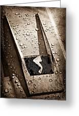 1963 Studebaker Avanti Hood Ornament Greeting Card