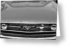 1966 Ford Mustang Front End Greeting Card