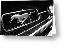 1967 Ford Mustang Gt Grille Emblem Greeting Card