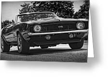1969 Chevy Camaro Ss Greeting Card
