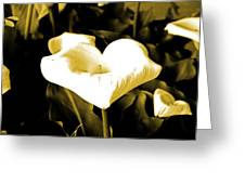 A Flower In The Shadows Greeting Card
