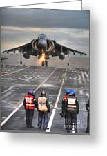 A Gr9 Harrier  Greeting Card