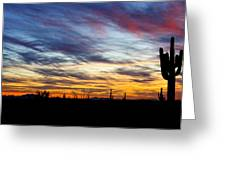 A Silhouette Sunset  Greeting Card