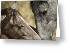 A Tender Moment  Greeting Card