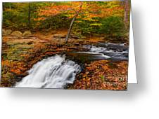 Above Ganoga Greeting Card