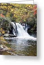 Abram Falls Greeting Card by Regina McLeroy