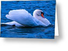 Abreast Greeting Card