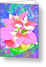 Abstract Colorful Plant Greeting Card