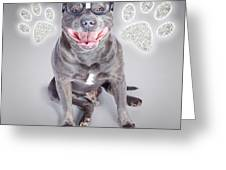 Access To Smart Dog Training Greeting Card