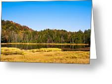 Adirondack Color Vi Greeting Card
