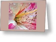 Instant Jewelry Greeting Card
