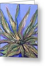 Agave Greeting Card by Karen Carnow