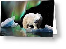 Alaska Aurora Polar Bear Search Greeting Card