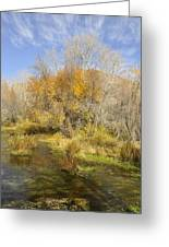 Alpine Loop Scenic Byway American Fork Canyon Utah Greeting Card