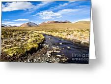 Altiplano In Bolivia Greeting Card