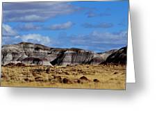 Amber Waves Of Grain And Purple Mountains Greeting Card