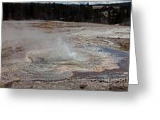 Anemone Geyser In Upper Geyser Basin Greeting Card