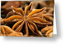 Anise Star Greeting Card