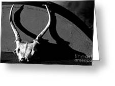 Antlers On Hay Baler Greeting Card