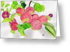 Apples Greeting Card by Bav Patel