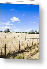 Arid Agricultural Landscape In South Tasmania Greeting Card