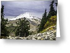 Artist Point Greeting Card by Blanca Braun