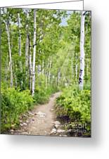 Aspen Path Impasto Greeting Card