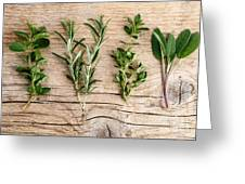 Assorted Fresh Herbs Greeting Card