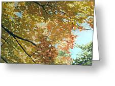 Autumn Branches Greeting Card
