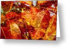 Autumn Bright Greeting Card