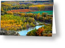 Autumn Colors On The Ebro River Greeting Card by RicardMN Photography