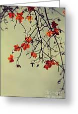 Autumn Greeting Card by Diana Kraleva